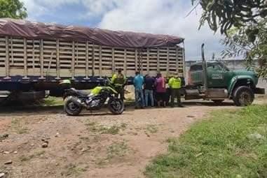 Dos capturas en Aguachica, César por transporte ilegal de madera.